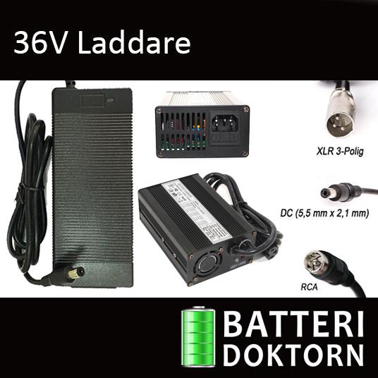 36V Litium Laddare